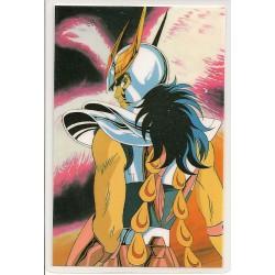 Saint Seiya - Rami Card - n° 0887-D